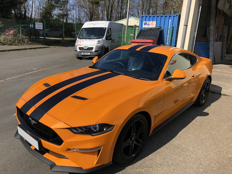 vehicle graphics, viper stripes, Wales
